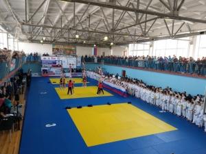 Искитимские спортсмены успешно выступили на турнире Пименова