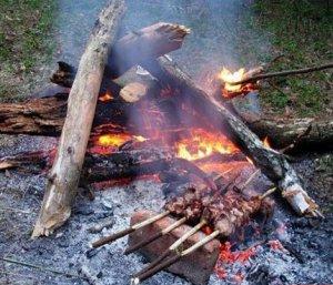На шашлык - только со своими дровами!