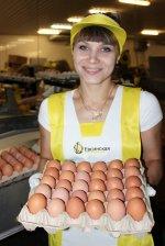 Инвестиционный проект «Евсинской» птицефабрики получил одобрение Правительства Новосибирской области