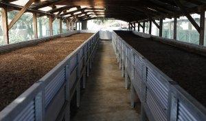 Китайцы решили делать в Искитиме биогумус