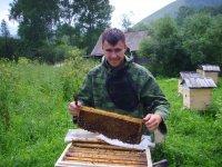 Городской праздник мёда