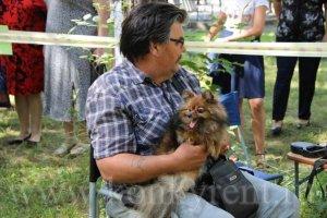 День города: волонтеры предлагают сфотографироваться с животными и поддержать приют для собак