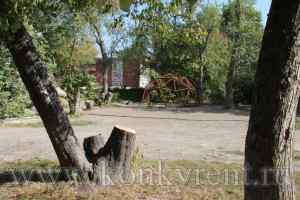Прокуратура: снос аварийных деревьев – ответственность собственников