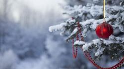 Искитим Новогодний: город встречает праздник