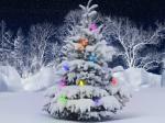Морозное Рождество ждет Новосибирскую область