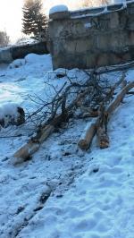 Парк Южного микрорайона распиливают на дрова?