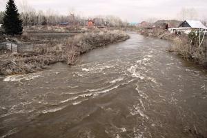 Уровень воды в Берди поднялся уже на 80 см