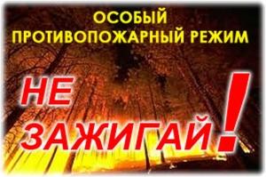 Особый противопожарный режим вводится в Новосибирской области