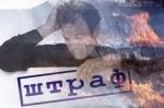 Оштрафовано 14 жителей Искитимского района за пал сухой травы