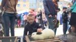 Товаропроизводители Искитимского района реализовали на ярмарке товаров почти на полмиллиона рублей
