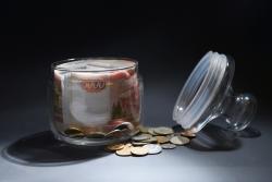 Стал известен месячный доход на «нормальную жизнь» российской семьи