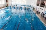 Юные пловцы из Искитима завоевали восемь медалей