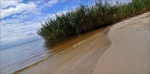 В Искитиме разрешен для купания только один пляж