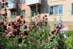 По заявкам жителей будут отремонтированы 9 дворовых территорий многоквартирных домов Искитима