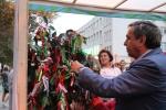 На праздновании 80-летия Новосибирской области искитимцы представили Святой источник