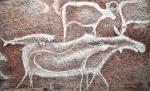 В Искитимском музее открылась выставка Владимира Капелько «Петроглифы древней Сибири»