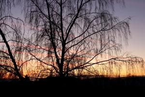 Как вам такой закат над Искитимом? ))