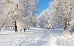 В Искитимском районе в связи с аномально холодной погодой введен режим повышенной готовности