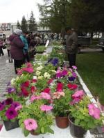 10 мая в Искитиме пройдет Форум цветоводов и садоводов–любителей