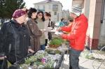 В центре Искитима развернулась ярмарка саженцев цветов и плодовых растений