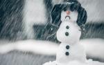 Искитим ожидают дожди и мокрый снег