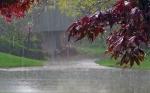 В Искитим идут грозы, ливни и шквалистый ветер