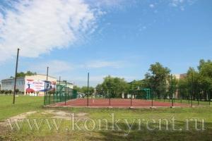 Искитим принимает финал летних сельских спортивных игр Новосибирской области