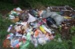 Активисты обнаружили в Искитиме 71 незаконную свалку