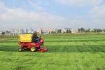 На строящемся в Линеве стадионе причесывают траву