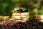 В Искитиме начинающие предприниматели могут получить грант
