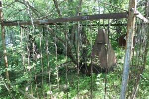 Определена дата проведения уборки на старом искитимском кладбище