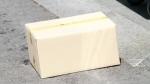Бесхозная коробка на о.п. Койниха стала объектом внимания полиции, пожарных, спасателей и ФСБ