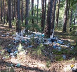 Караканский бор - вместо грибов и ягод растут кучи мусора
