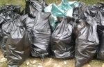 Для уборки на старом городском кладбище нужны мешки для мусора