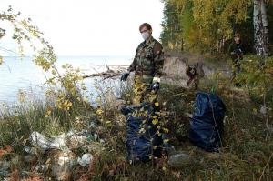 Через соцсети жительница Новосибирска организовала уборку в Караканском бору