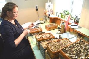 Специалисты «Россельхозцентра» проверяют семенной фонд района