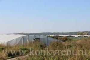 Тепличные хозяйства в Искитимском районе оштрафовали за порчу арендуемых земель
