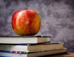 «Предпенсионеров» будут обучать новым профессиям за счет государства