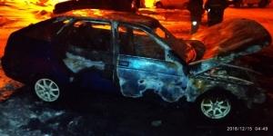 При пожаре в надворных постройках  в Рощинском погиб человек