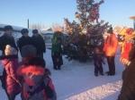 Город выделил ТОСам 100 тысяч рублей на новогодние елки во дворах