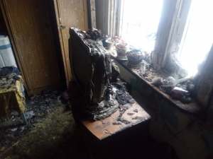 Ожог обеих рук получил хозяин горевшего в Евсино дома
