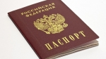 Паспорт гражданина РФ — за час
