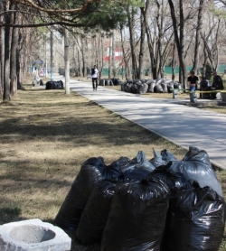 В дни субботников мусор примут бесплатно
