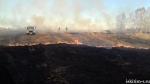 30 апреля горел прошлогодний бурьян на территории заброшенной фермы в п. Рябчинка