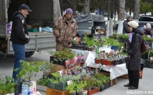 14 мая состоялся традиционный форум цветоводов и садоводов-любителей Искитимского района