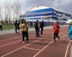 В Искитиме состоялся муниципальный этап летнего фестиваля ГТО