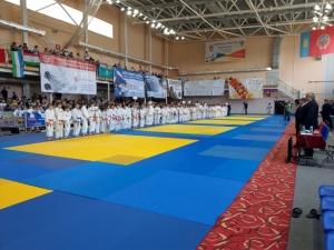 Искитимские спортсмены –  на международном фестивале дзюдо