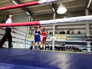 В Искитиме прошел традиционный турнир по боксу памяти Бобринского