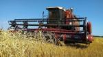 Три сельскохозяйственных предприятия Искитимского района полностью завершили уборку зерновых