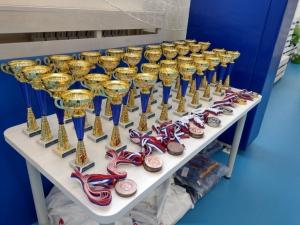 Искитимские дзюдоисты успешно выступили на всероссийской турнире